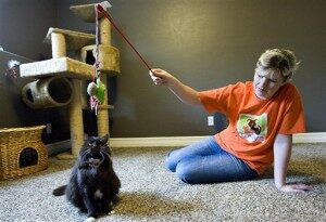 7 Lives Left: Cat Survives 2 Attempts at Euthanasia