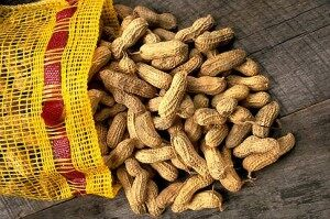 Housecall for Health: Too Clean Causes Peanut Allergies