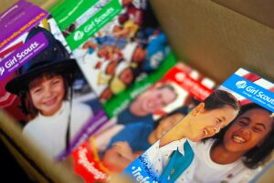 Girl Scout Cookies Theft