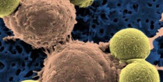 One Drug for All Cancer Types?