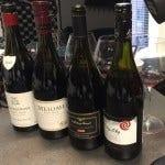 Pinot Noir Bottles